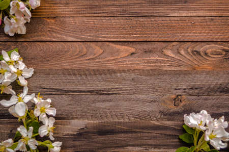 Photo pour Rustic wood background with natural style decorations spring white blossom. Background space for text. Natural blue border background vintage mock up. - image libre de droit