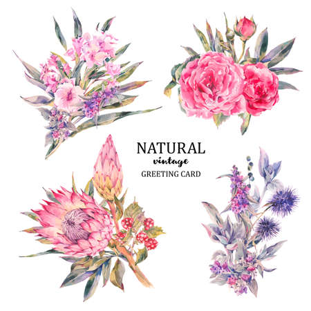 Set of vintage floral vector bouquet of roses, protea, stachys, thistles, blackberries and wildflowers, botanical natural flowers Illustration on white. Floral greeting card, flower decoration bouquet