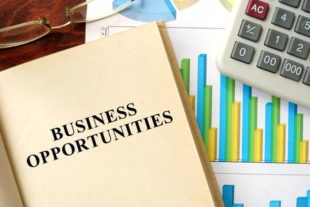 Words business opportunities written on a book. Business concept.