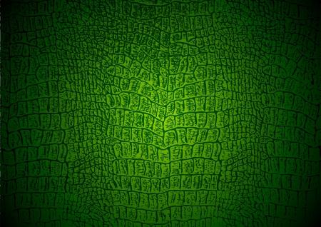 The texture of crocodile
