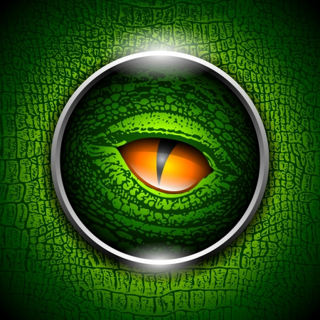 Eye of reptiles