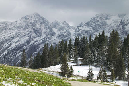 Snow covering alpine landscape