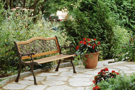 Bench in a garden setting