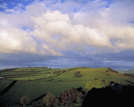 Fields around Dunamace, Co Laois, Ireland