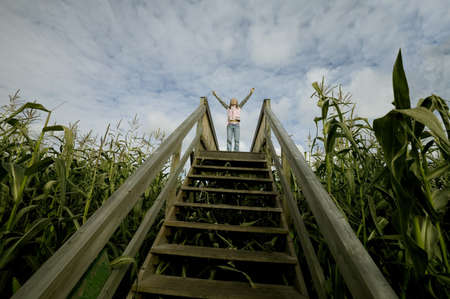 Person standing at the top of stairs in a corn field