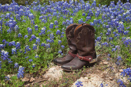 A brown leather pair of cowboy boots with spurs sits on rock in a field of Texas bluebonnets