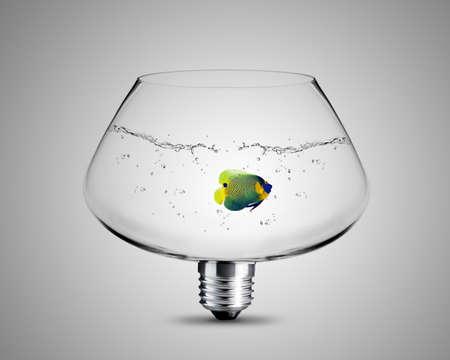 light bulb made from fish bowl, light bulb conceptual Image.