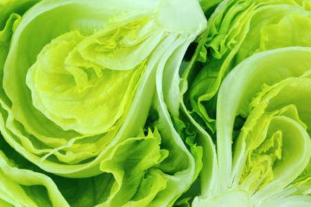 Foto de Fresh Green Iceberg lettuce . - Imagen libre de derechos