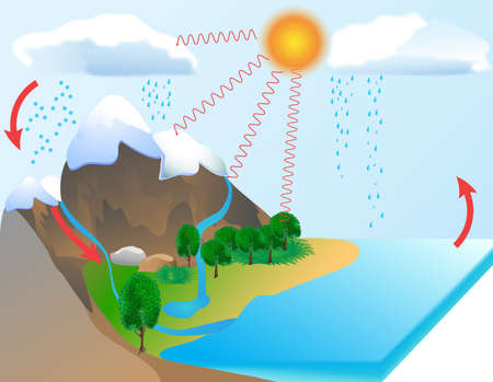 Water cycle diagram  The sun, which drives the water cycle, heats water in oceans and seas  Water evaporates as water vapor into the air