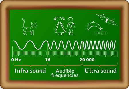Sound frequency ranges for infrasound, audible and ultrasound waves and the corresponding animals that can hear them  Humans are only able to hear between 20Hz to 20,000Hz, anything higher than 20,000Hz or lower than 20Hz cannot be heard