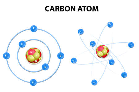 protons, neutrons, and electrons of a carbon atom