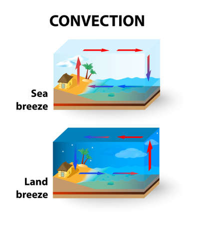 Convection is the transfer of thermal energy by particles moving through a fluid.