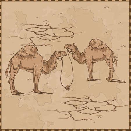 camels map vintage