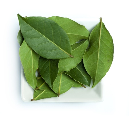 Bay leaf spice in a bowl on white background
