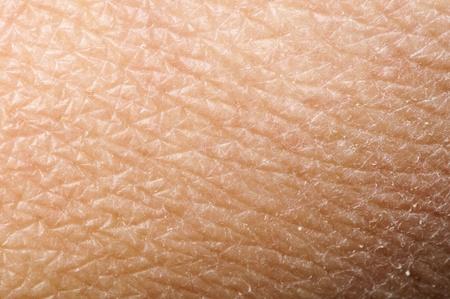 Photo pour Human skin close up. Structure of Skin - image libre de droit