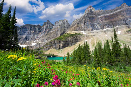 Photo for A variety of wildflowers in a meadow overlooking a glacial pond in northern Montana - Royalty Free Image