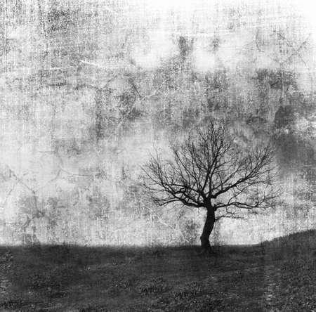 alone  tree on grunge texture. b&w