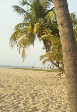 Mararikulam beach, Kerala