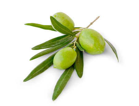 Three olives with leaves on white background