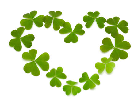 heart made of clover isolated on white