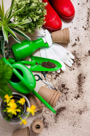 Photo pour spring concept - top view of gardening tools and potted plants on wooden table background - image libre de droit