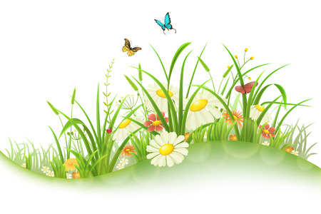 Illustration for Spring summer meadow with green grass, flowers and butterflies - Royalty Free Image