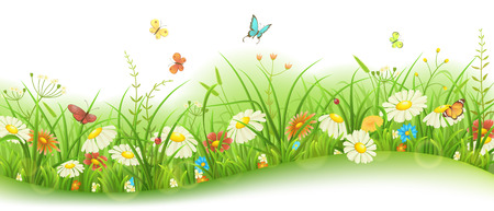 Illustration pour Spring or summer floral banner with green grass, flowers and butterflies - image libre de droit