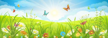 Illustration pour Floral summer or spring landscape, meadow with flowers, blue sky and butterflies - image libre de droit