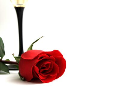Red rose Valentines on white background