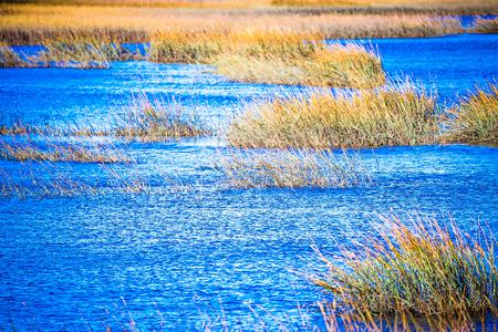 waterway and marsh views on johns island south carolina