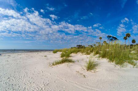 Photo pour Beach scenes at hunting island south carolina - image libre de droit