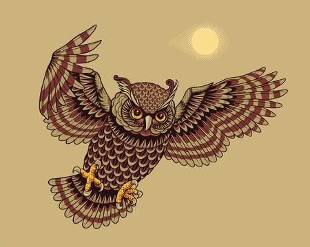 Flying Owl Bird  Vector illustration