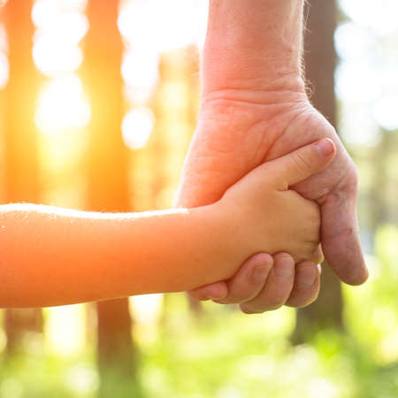 Foto de Close-up hands, an adult holding a child's hand, nature and sunset in background. - Imagen libre de derechos