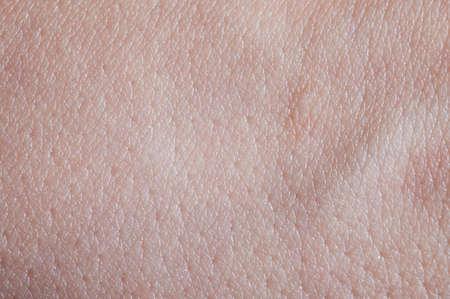Photo pour Young skin texture background macro close up view - image libre de droit