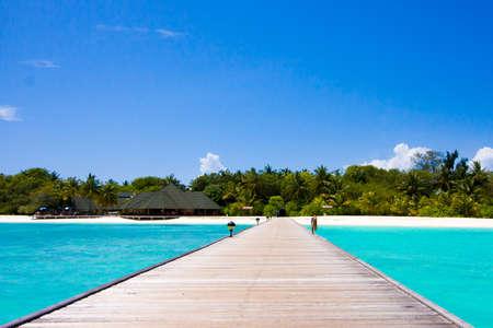 Photo for Maldives beach scene - Royalty Free Image