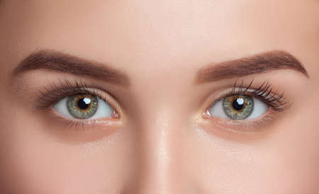 Photo pour Beautiful woman with long eyelashes, beautiful make-up and thick eyebrows. Beautiful blue eyes close up. Looking at the camera. Professional makeup and cosmetology skin care. - image libre de droit