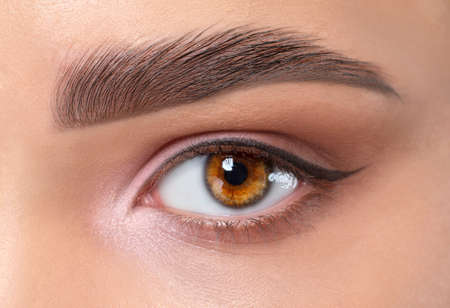 Photo pour Eyes and eyebrows close up. Portrait of a beautiful teenage girl with beautiful makeup and healthy clean skin. Makeup and cosmetology concept. - image libre de droit