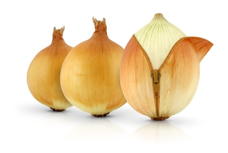 Ripe onions with zipper, creative concept