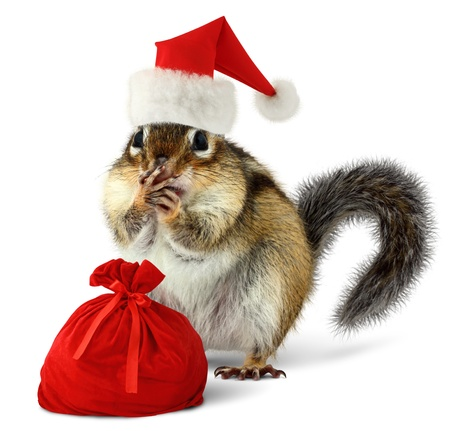 Chipmunk in red Santa Claus hat and bag with gifts on white background