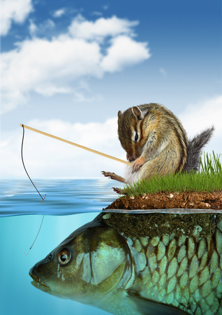 unpredictable result concept, chipmunk fishing on fish