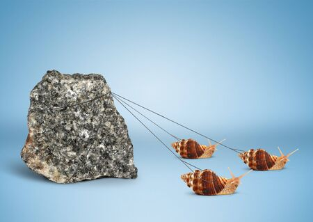 Foto de Team work concept, snails pulling big rock - Imagen libre de derechos