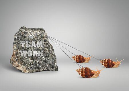 Photo pour Teamwork concept, group of snails pulling stone - image libre de droit