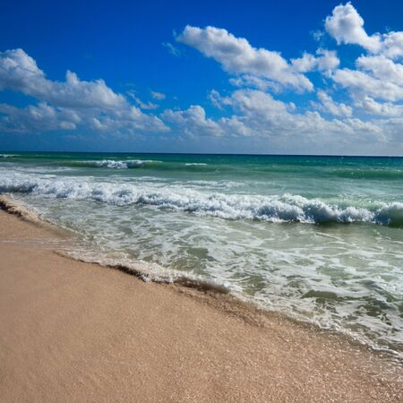 Beautiful beach and  waves of Caribean Sea