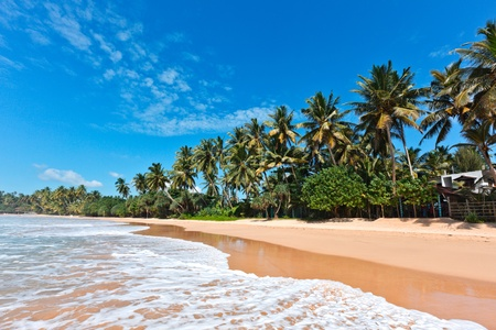 Tropical paradise idyllic beach. Sri Lanka