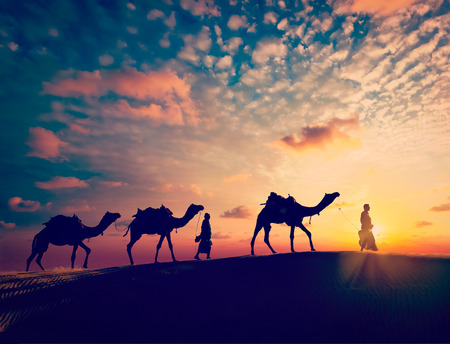 Vintage retro effect filtered hipster style image of Rajasthan travel background - two indian cameleers camel drivers with camels silhouettes in dunes of Thar desert on sunset. Jaisalmer, Rajasthan, India