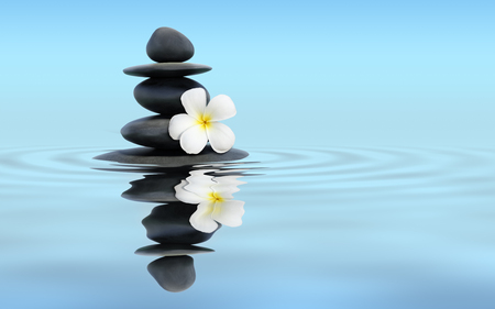 Zen spa concept panoramic banner image - Zen massage stones with frangipani plumeria flower in water reflection