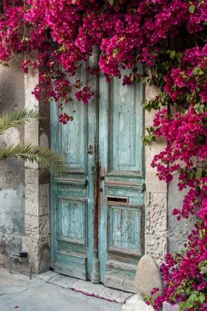Old wooden door with bougainvillea in Cyprus