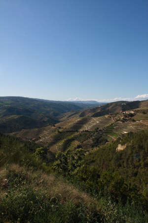 A river landscape the nature reserve of Geres, Portugal. The vineyards of the river Douro Portuguese wine to Porto.