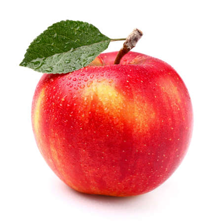 Photo for One apple - Royalty Free Image