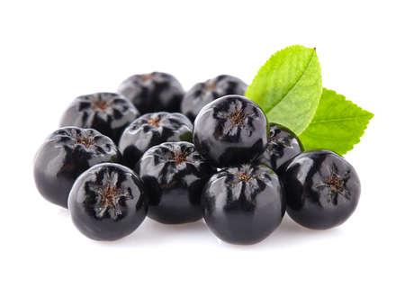 Foto für Chokeberry with leaves - Lizenzfreies Bild
